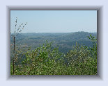 uwharrie%20mountains003003.jpg