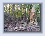 uwharrie%20mountains003004.jpg